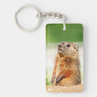 Young Groundhog Key Ring
