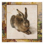 Young Hare Print