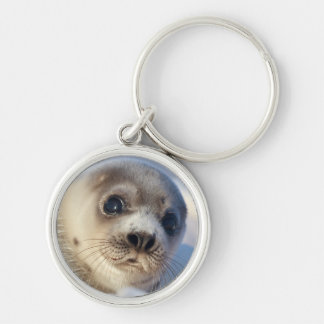 Young harp seal starting to shed its coat Silver-Colored round key ring