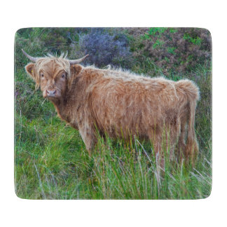 Young Highland Cow Glass Cutting Board