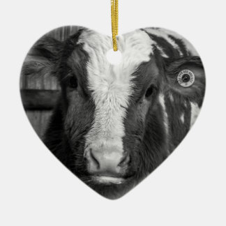 Young Holstein Dairy Bull Calf in Black and White Ceramic Heart Decoration