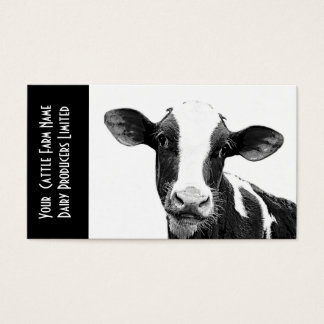 Young Holstein Veal or Dairy Calf Business Card