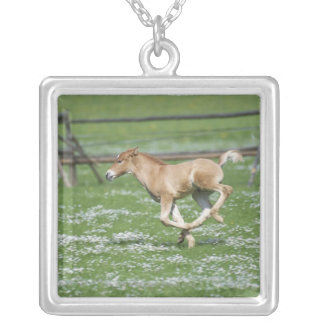 Young Horse Running Silver Plated Necklace