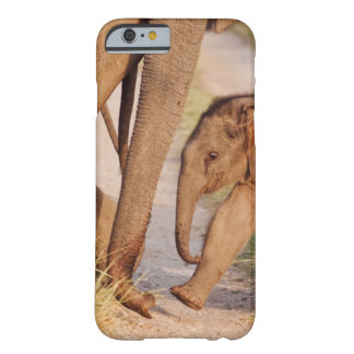 Young one of Indian Asian Elephant Barely There iPhone 6 Case