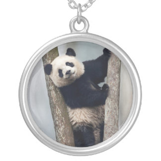 Young Panda climbing a tree, China Silver Plated Necklace