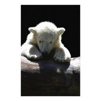 young polar bear on a log custom stationery