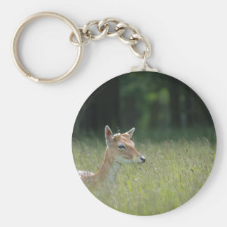 Young Richmond Park deer Basic Round Button Key Ring