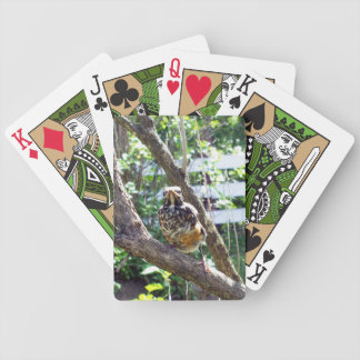Young Robin on Lilac branch Bicycle Playing Cards