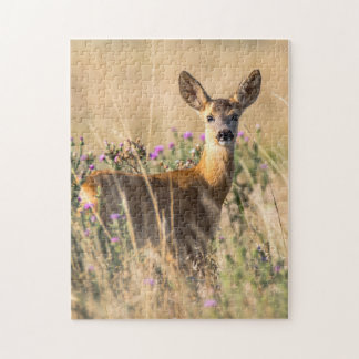 Young Roe Deer in Meadow Jigsaw Puzzle