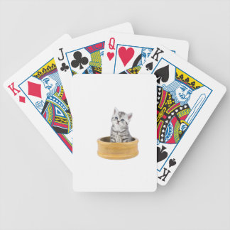 Young silver tabby cat sitting in wooden bowl bicycle playing cards