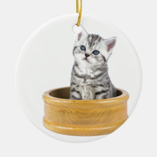 Young silver tabby cat sitting in wooden bowl ceramic ornament