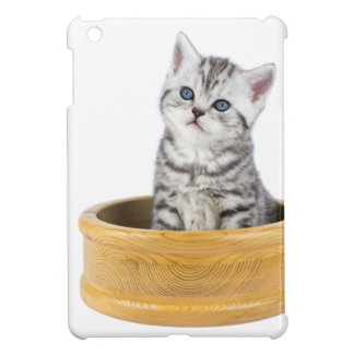Young silver tabby cat sitting in wooden bowl cover for the iPad mini