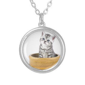 Young silver tabby cat sitting in wooden bowl silver plated necklace