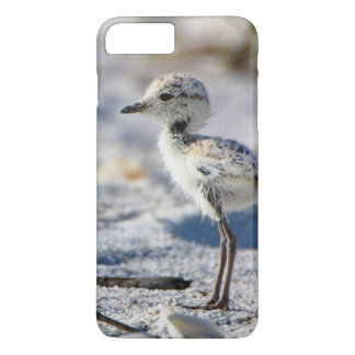 Young Snowy Plovers (Charadrius alexandrinus) iPhone 7 Plus Case