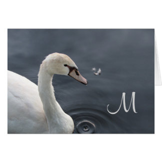 Young Swan & Feather Card