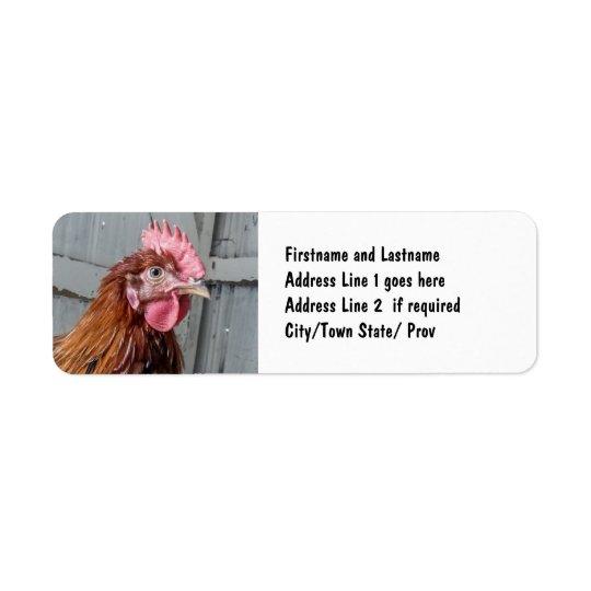 Young Welsummer Rooster Chicken Return Address Label