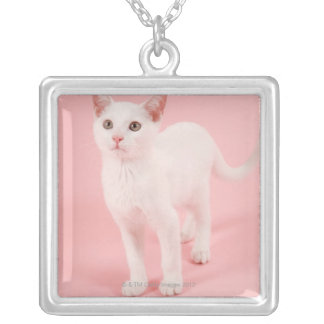 Young white cat 2 silver plated necklace