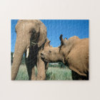 Young White Rhinoceros Jigsaw Puzzle