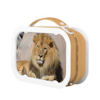 Your Custom Orange yubo Lunch Box