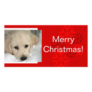Your Dog Photo Snowflake Christmas Card Personalized Photo Card