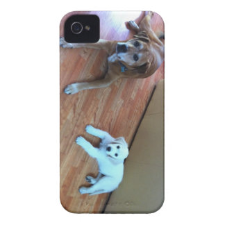 Your favorite photos on phone covers