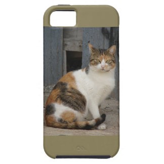 Your lovely cat on your phone iPhone 5 cover