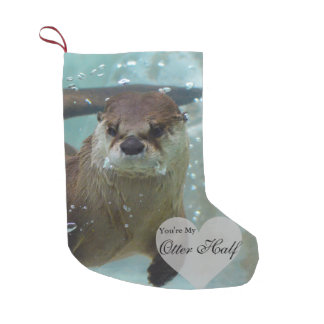 Your my Otter Half Brown River Otter Swimming