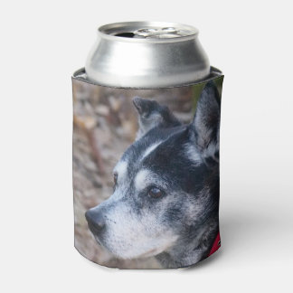 Your pet can cooler
