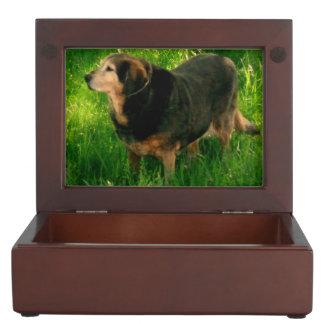 Your pet memory keepsake box add your pet photos