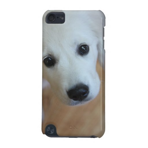 Your pet on an iPod touch case