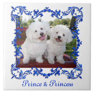 Your Pet Or Any Photo Cute Custom Ceramic Tile