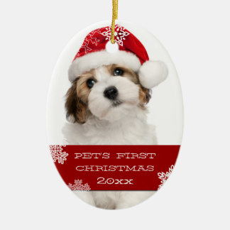 Your Pet s First Christmas Photo Ornament RED