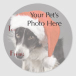 Your Pet's Photo on Christmas Name Tags Classic Round Sticker