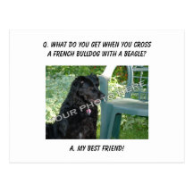 My Best French Bulldog Friend Gifts on Zazzle AU
