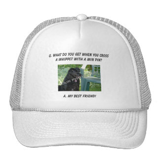 Your Photo Here! My Best Friend Whippet Mix Hat
