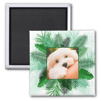 Your Photo in a Palm Leaf Frame magnet