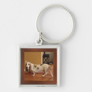 Your Photo Keychain, Small, Large, Round or Square Silver-Colored Square Key Ring