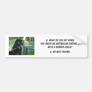 Your Photo! My Best Friend Australian Shepherd Mix Bumper Sticker