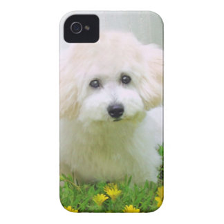 Your Photo On BlackBerry Bold Case iPhone 4 Cover