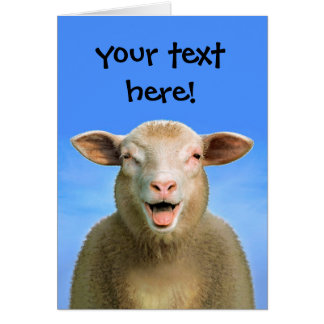 your text here! card
