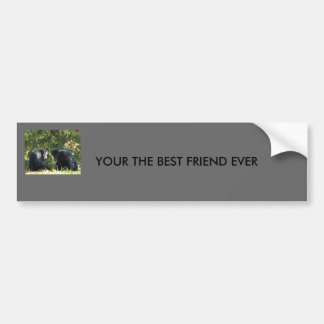 YOUR THE BEST FRIEND EVER BUMPER STICKERS