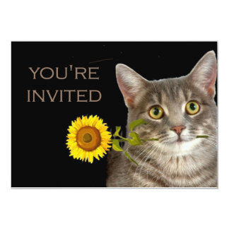 You're invited!  says this kitten 13 cm x 18 cm invitation card