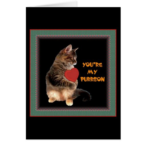 You're my Purrson Greeting Cards