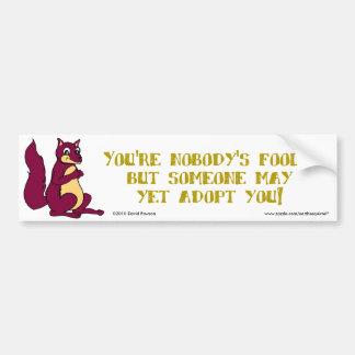 You're nobody's fool ... car bumper sticker