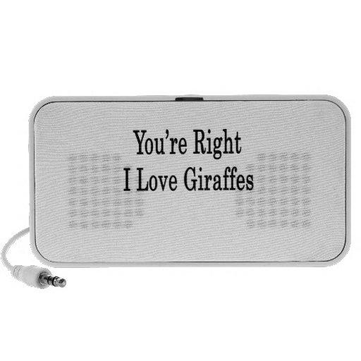 You're Right I Love Giraffes Travel Speaker