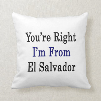 You're Right I'm From El Salvador Pillows