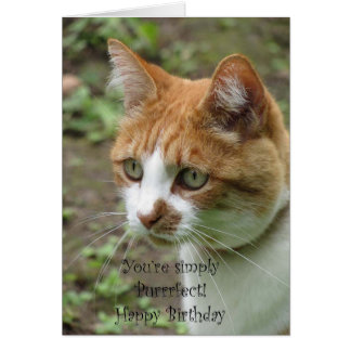 You're Simply Perfect-Frameable Birthday Card