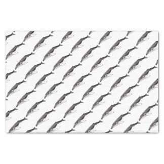 Yubarta, hunchbacked whale tissue paper