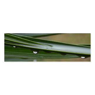 Yucca Dew Bookmark Business Card Template