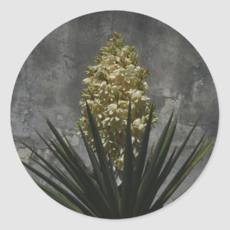 Yucca in Bloom Round Stickers